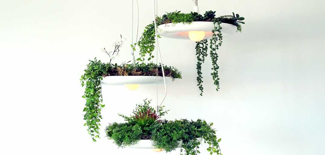 Living Lamps: Hanging Garden Design