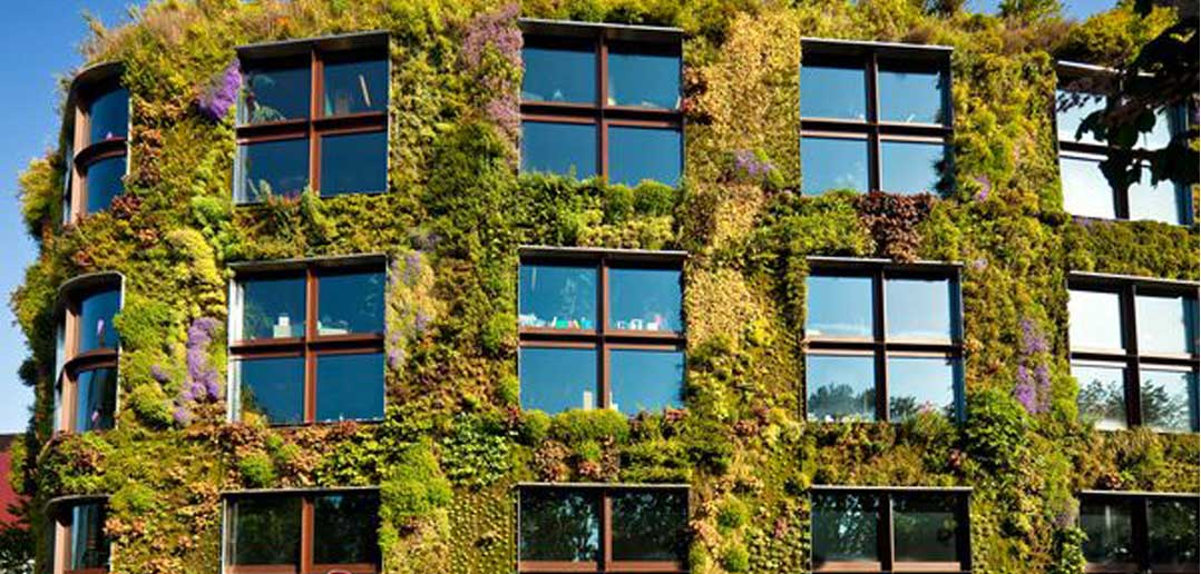 A to Z Outdoor Design Guide: Living Wall